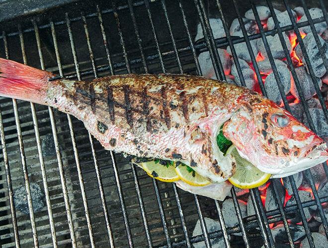 castello_fish